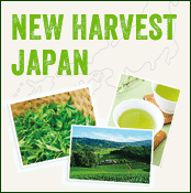 new harvest japanese tea