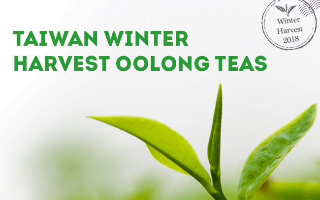 New Harvest Teas - Taiwan Winter Harvest 2018