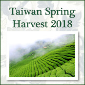 Taiwan Spring Harvest Oolong 2018